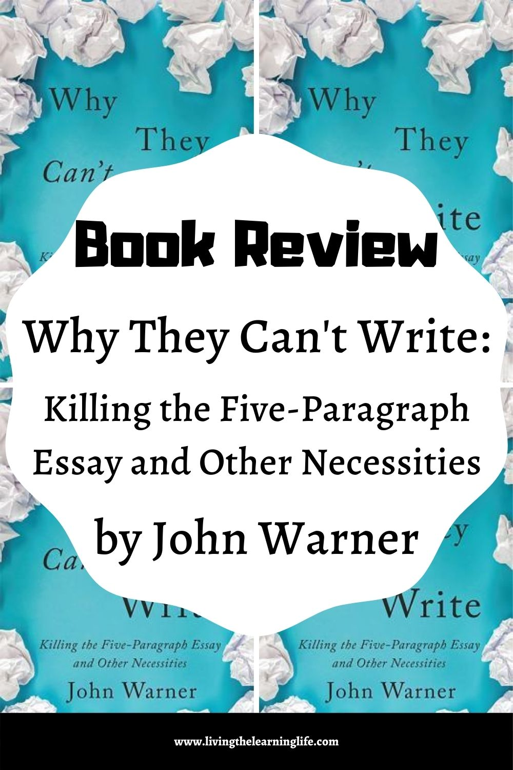 why they can't write book review