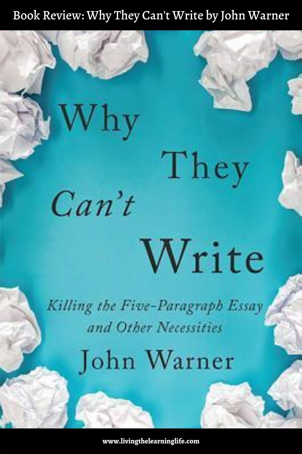 book review why they can't write by john warner