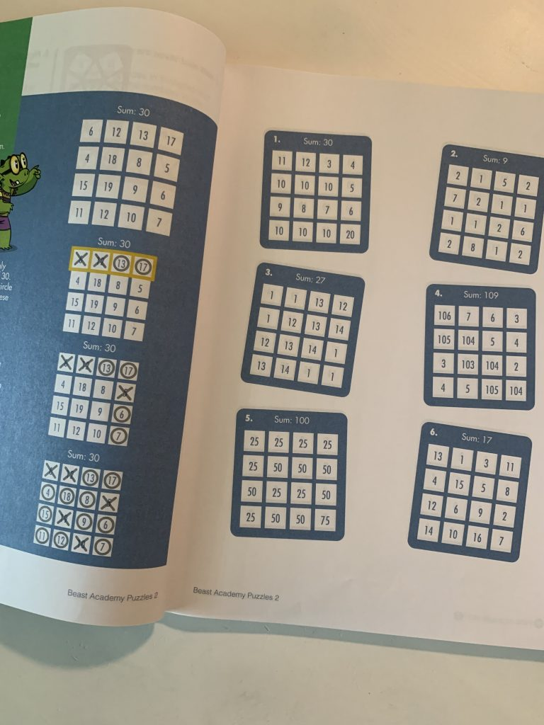 beast academy puzzles photo 1